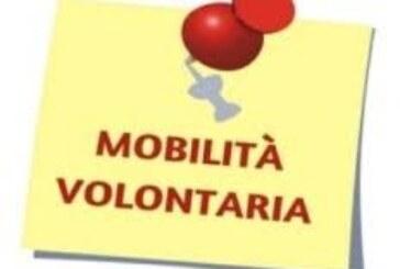 """AVVISO PUBBLICO DI MOBILITA' ESTERNA VOLONTARIA PER N. 1 POSTO """"ISTRUTTORE TECNICO GEOMETRA"""" CATEGORIA GIURIDICA C A TEMPO PIENO E INDETERMINATO DA ASSEGNARE ALL'AREA TECNICA DEL COMUNE DI MONTEMIGNAIO (AR) (Scadenza 09 novembre 2020)"""